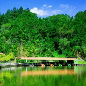 10 motivos para conhecer Guararema nas férias 3