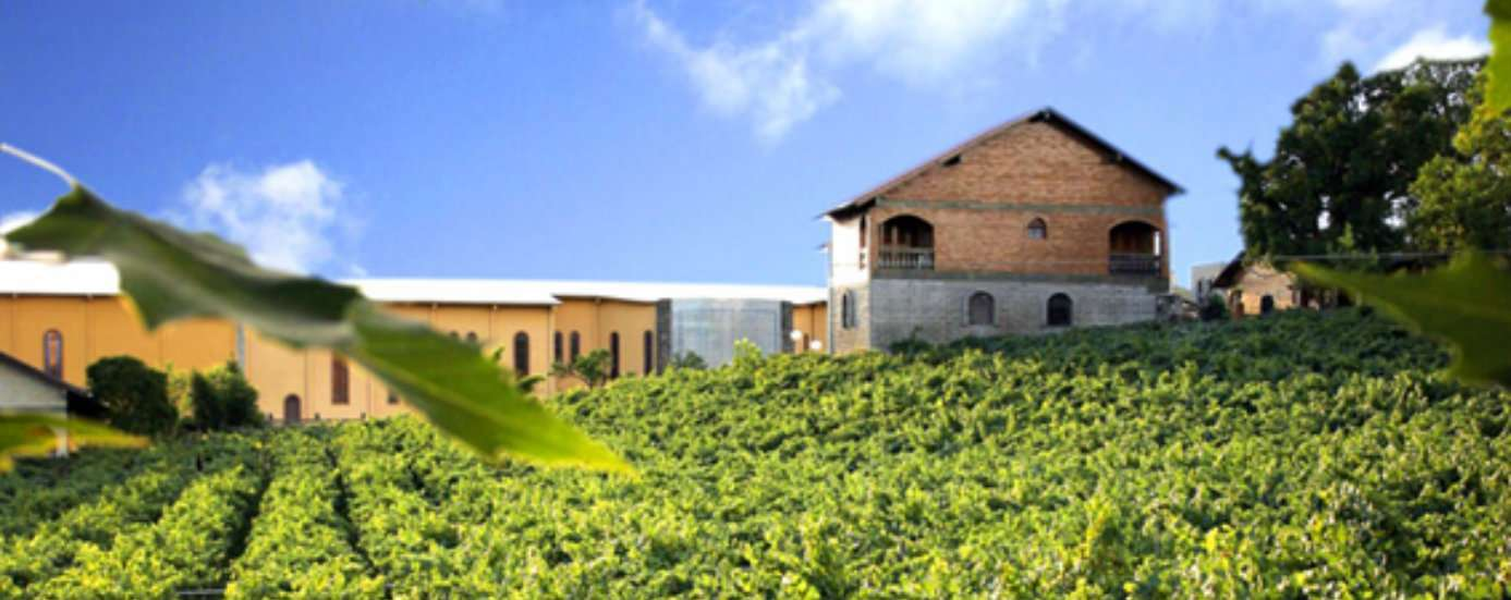Casa Valduga é eleita um dos melhores destinos de enoturismo do Brasil e Uruguai 1
