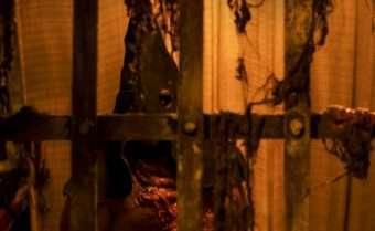 A Hora do Horror - Foto Divulgação Hopi Hari