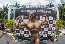 Foto com estátua de Schwarzenegger em São Paulo pode render prêmios pelas redes sociais 6