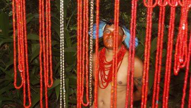 Dia do Índio no Parque Lage acontece no próximo fim de semana 1