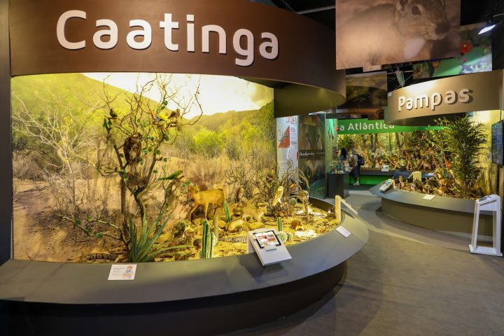 Itaipu Natureza fas promoção em Abril