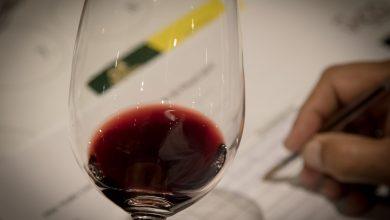 8ª Grande Prova Vinhos do Brasil avaliará produtos de uma das três melhores safras da história 2
