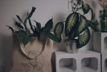 Eco-friendly: a renovação da moda a partir da consciência 8