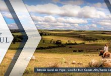 Turismo Rural em alta na Serra Catarinense 11