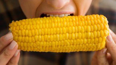 Além da falta de educação, comer de boca aberta pode fazer muito mal à saúde 1