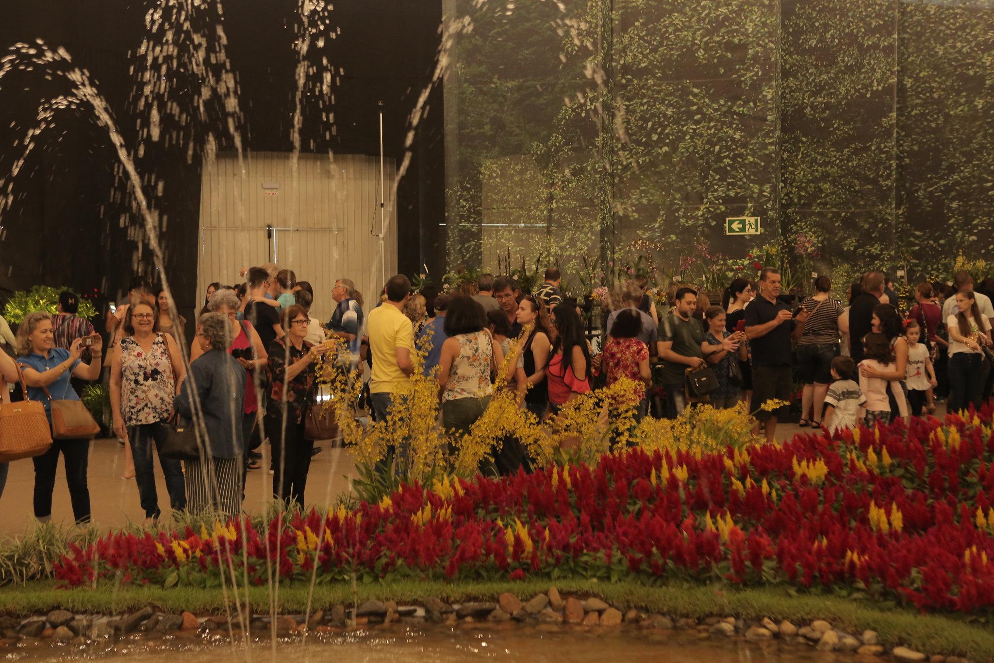 81ª Festa das Flores de Joinville conecta natureza e qualidade de vida