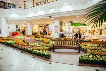 Atlântico Shopping fará distribuição gratuita
