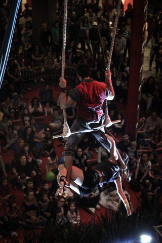 O primeiro Festival de Circo de Florianópolis promove entre os dias 19 e 27 de outubro mais de 20 atrações com artistas do Brasil e do exterior.